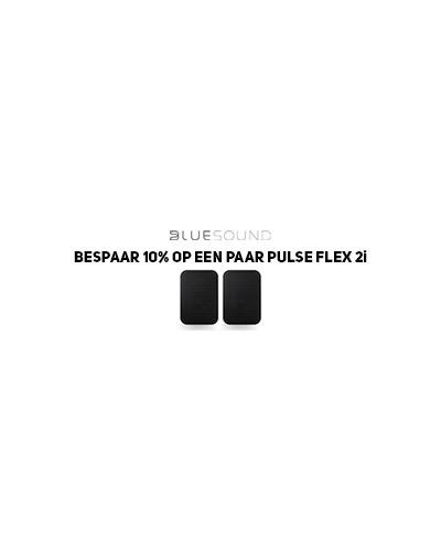 BLSACTIE300x100px.jpg