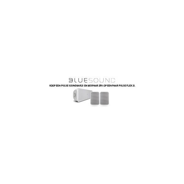 BLSSURROUNDACTIE300x100pxV2.jpg